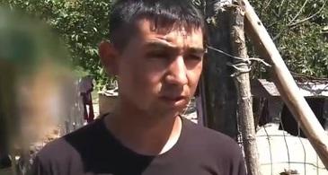 Declaratii socante facute de fratele soferului care a condus microbuzul mortii in Ungaria. Marturia lui rastoarna situatia