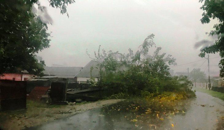 Oameni loviti de fulger, copaci doborati, acoperisuri luate de vant, curti si gospodarii inundate! Furtunile si-au facut de cap in Romania!