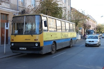 Caz HALUCINANT in Satu Mare! O femeie a fost prinsa intre usile autobuzului, iar soferul a continuat sa mearga