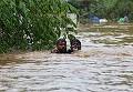 Bilant tragic! Sunt cel putin 324 de morti in urma inundatiilor! Autoritatile sunt in alerta! Sute de mii de oameni au ramas fara agoniseala de-o viata!
