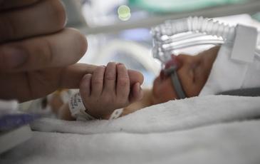Nascuti ca sa se lupte cu sistemul! Mii de bebelusi mor cu zile doar pentru ca nu au loc in incubatoare speciale!