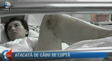 Atacata de caini de lupta! O femeie din Arad, la limita dintre viata si moarte