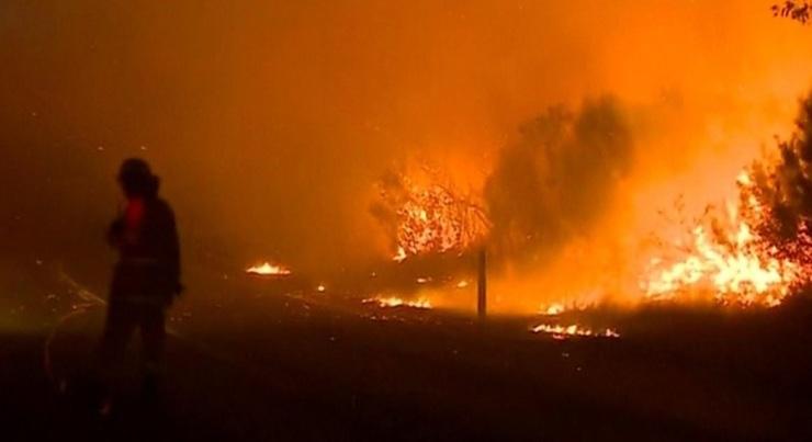 Incendii devastatoare in Australia! Vantul a raspandit flacarile si exista riscul sa se extinda la casele oamenilor