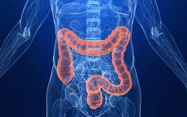 Ai grija mare! Asta e alimentul pe care il consumi zilnic si care te imbolnaveste de cancer de colon! Trebuie neaparat sa reduci consumul lui