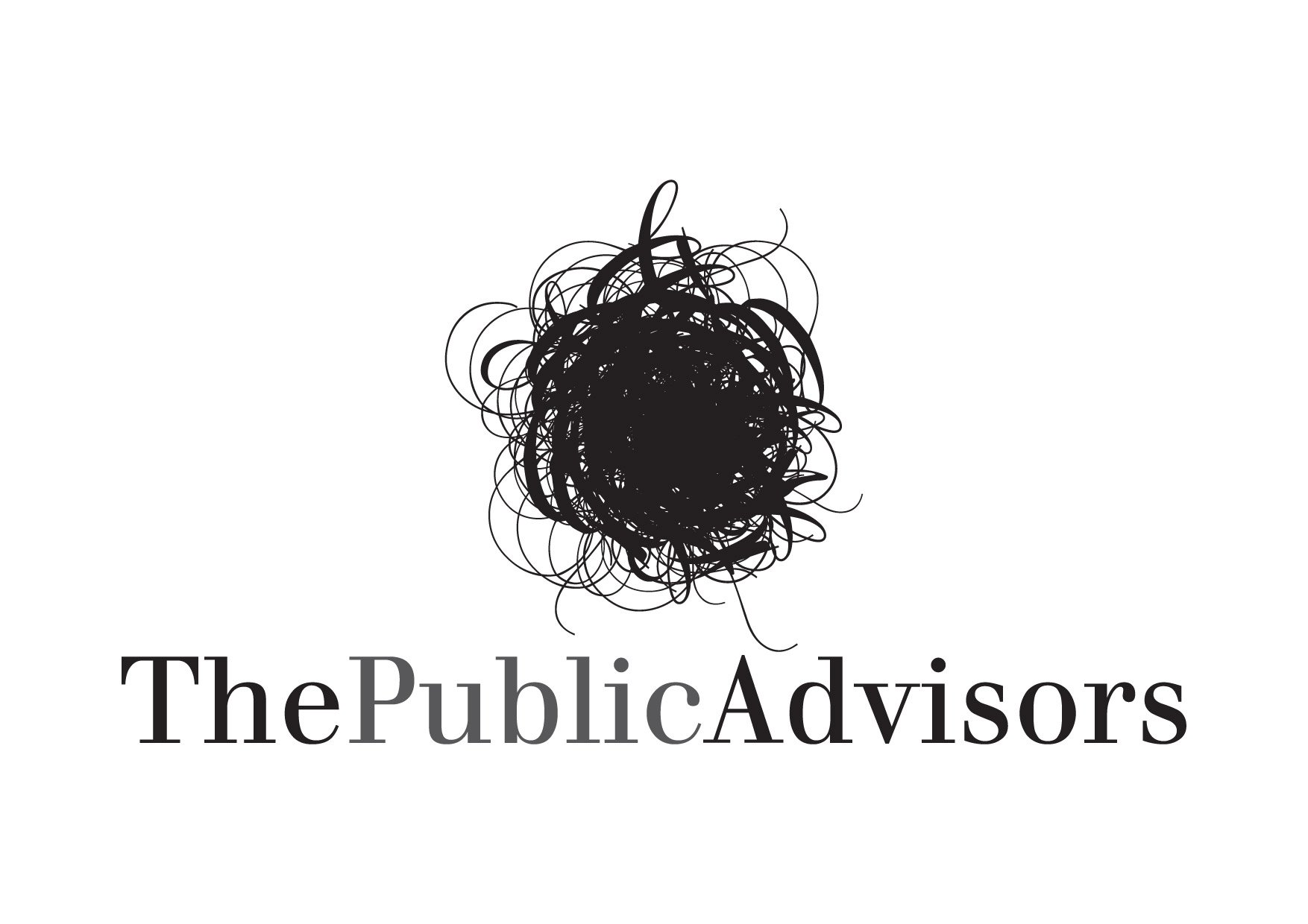 Logo The Public Advisors